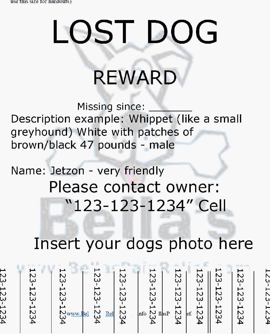 Doc14031984 Lost Poster Template Missing Dog Poster 61 – Missing Persons Poster Template